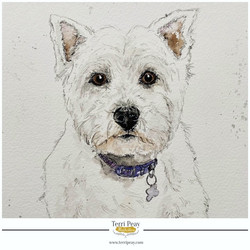'Peggy' By Terri Peay