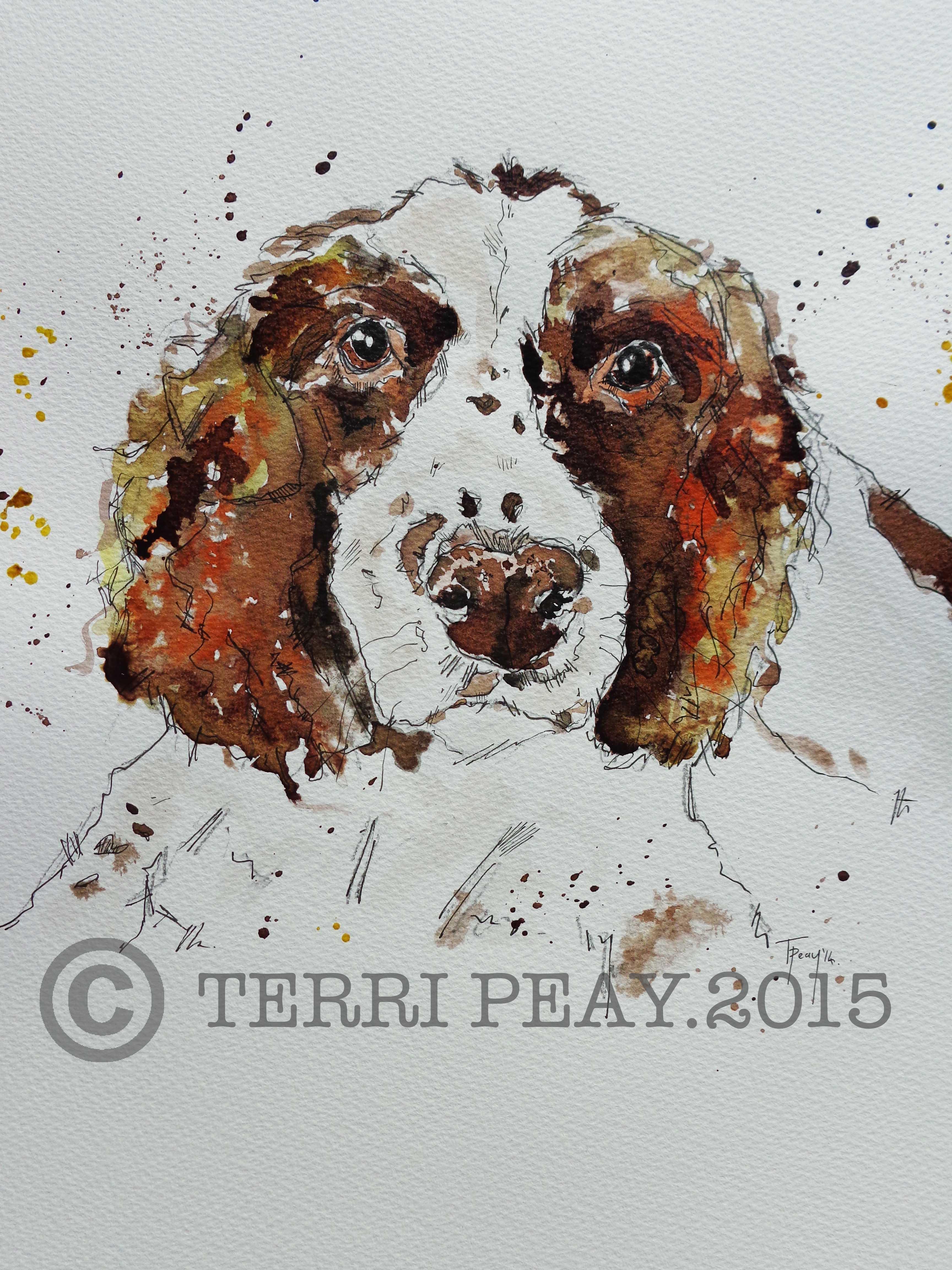 'Spaniel' By Terri Peay