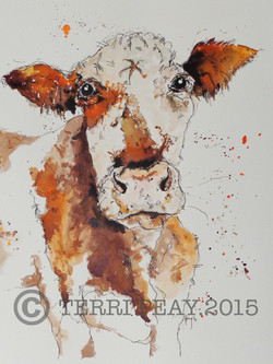 'Brown Cow' By Terri Peay