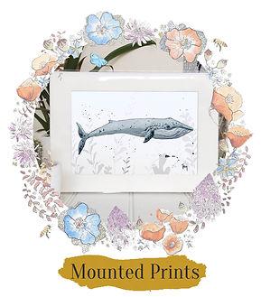 Shop Mounted Prints.jpg