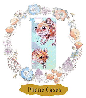 Shop Phonecases.jpg