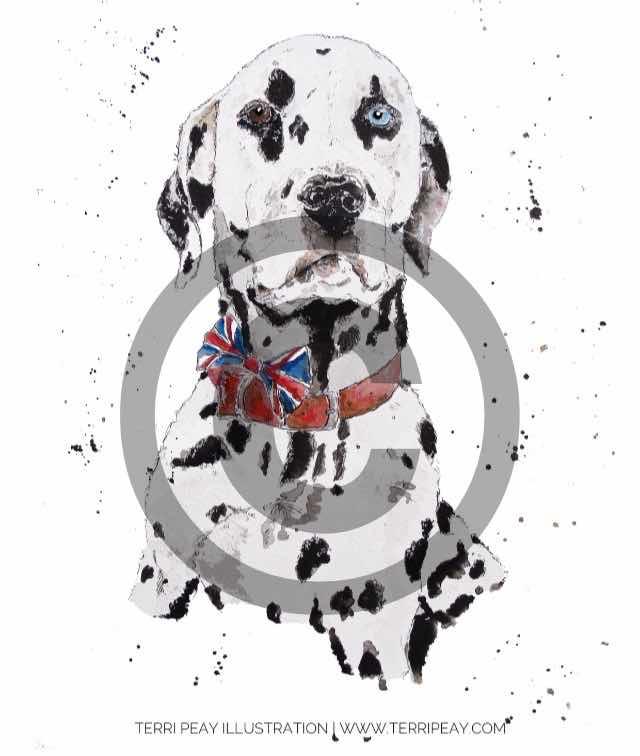 'Dalmatian' By Terri Peay