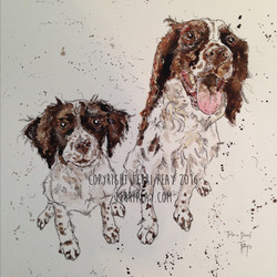 'Two Spaniels' By Terri Peay