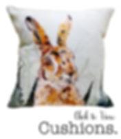 shop images cushions.jpg