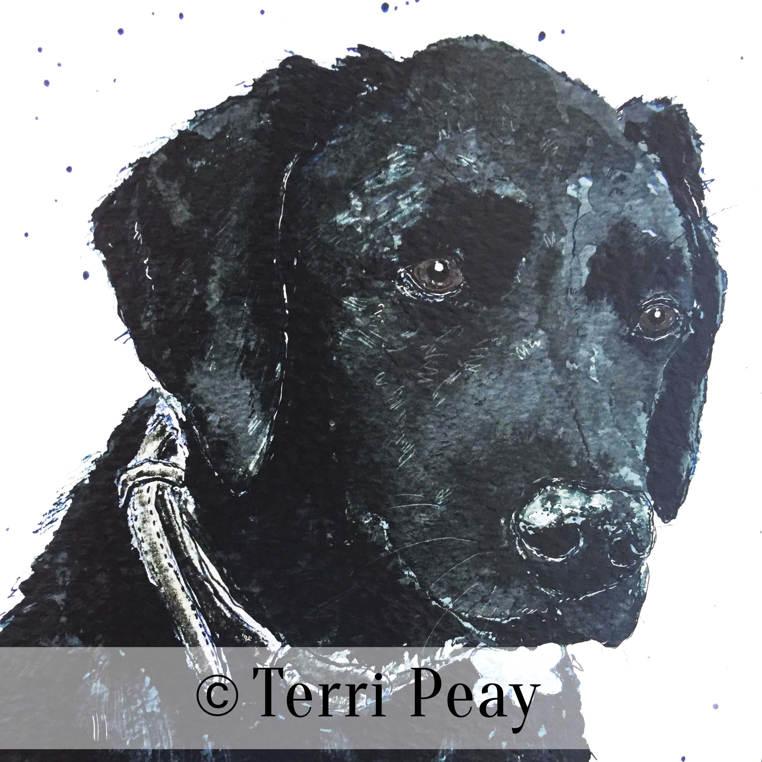 'Hector' By Terri Peay