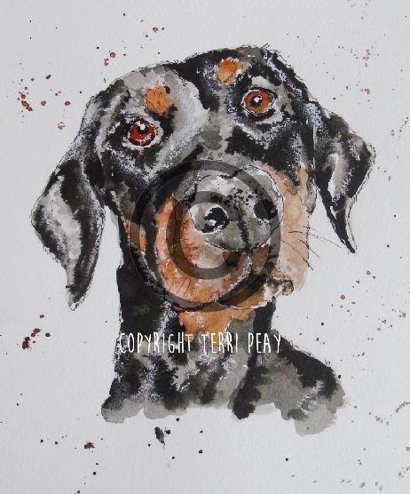 'Daisy' by Terri Peay