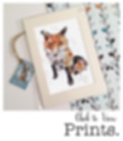 shop images prints.jpg