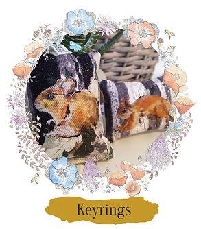 Shop Keyrings.jpg