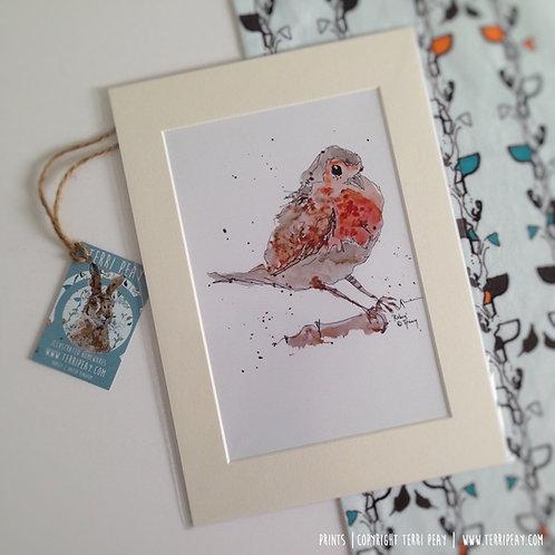 'Robin' Print