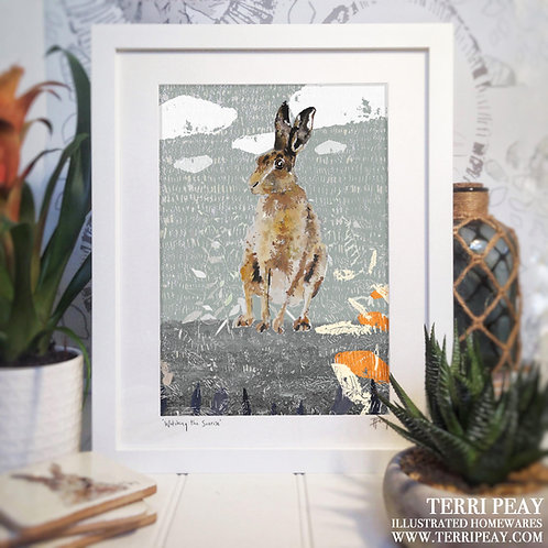 Hare 'Watching The Sunrise'