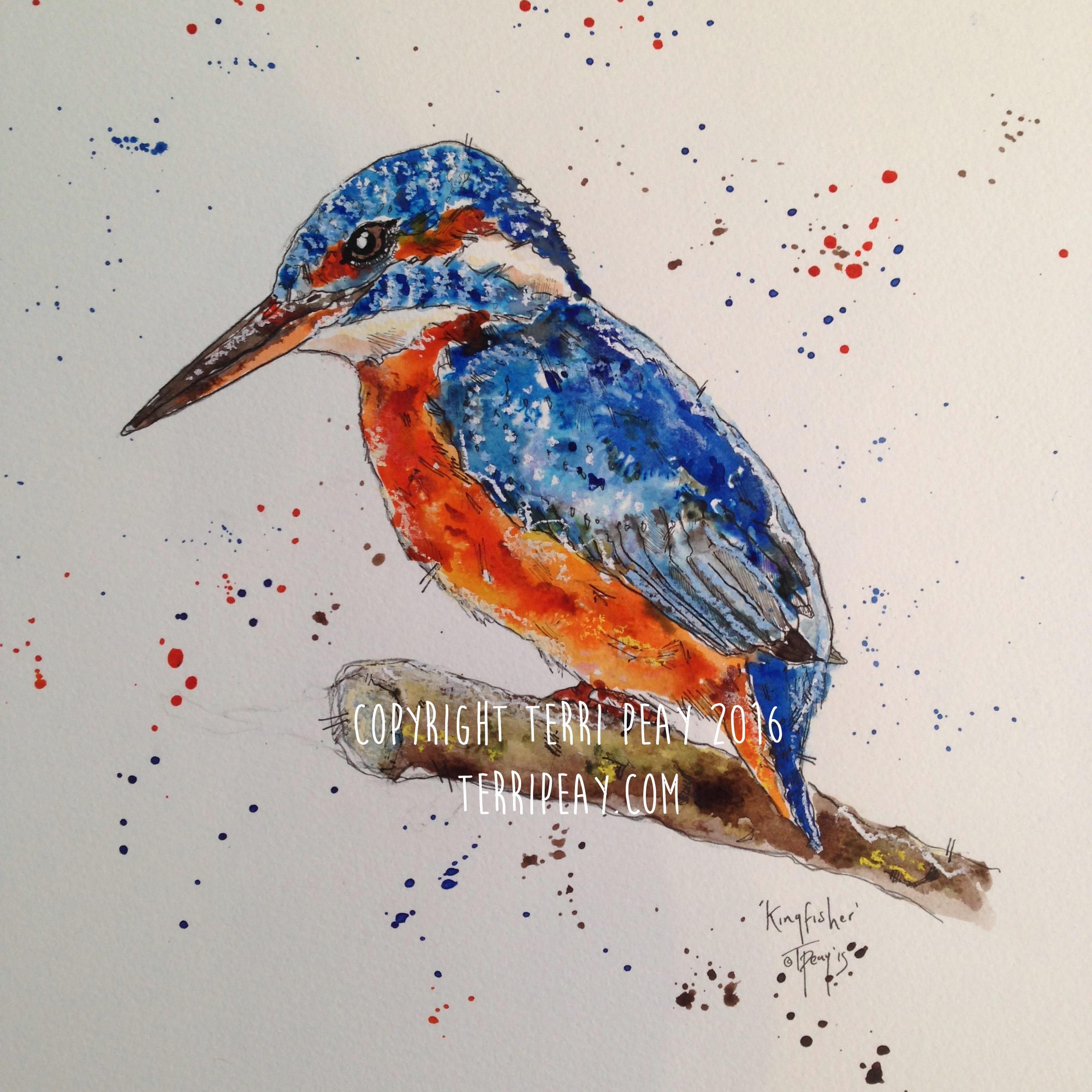 'Kingfisher' By Terri Peay