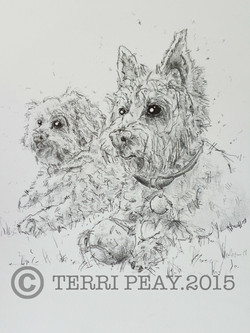 'Two Westies' By Terri Peay