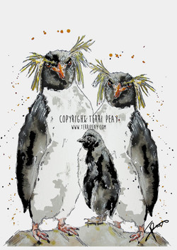 'Rock Hopper Penguins' By Terri Peay