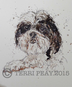 'Herbie' By Terri Peay
