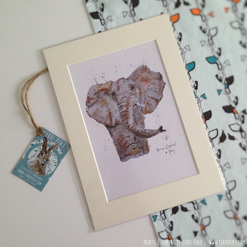 'African Elephant' Print