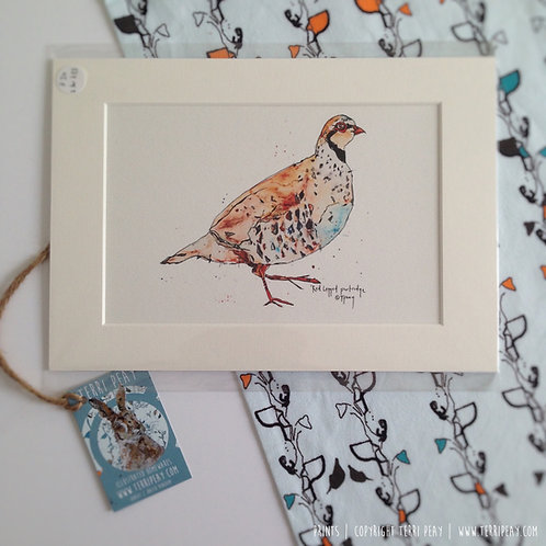 'Partridge' Print