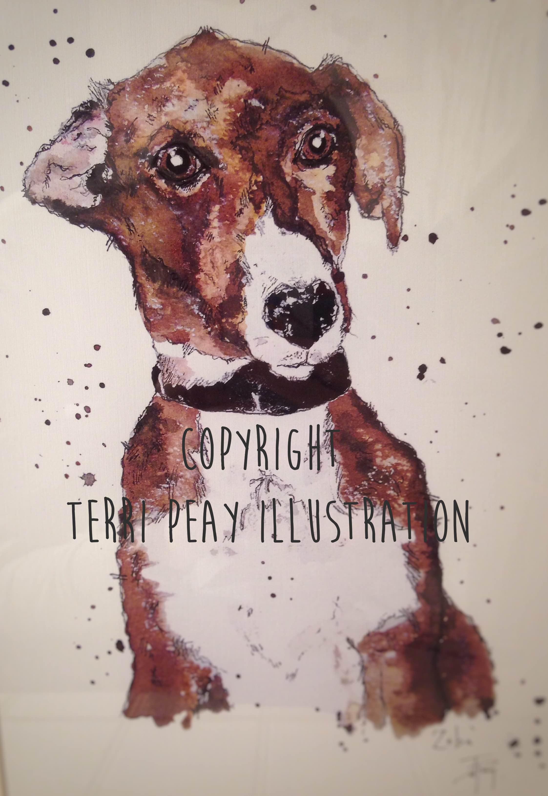 'Zeba' By Terri Peay