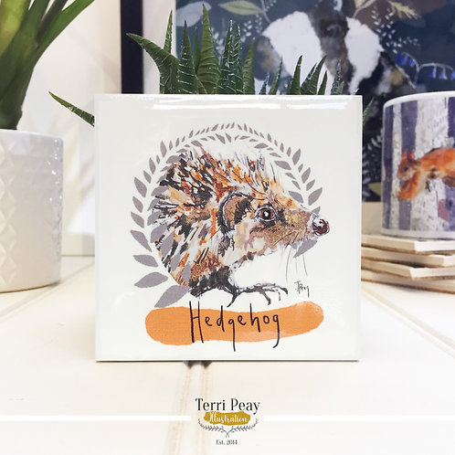 'European Hedgehog' Coaster