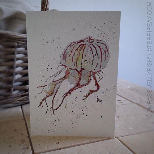 'Compass Jellyfish' Card