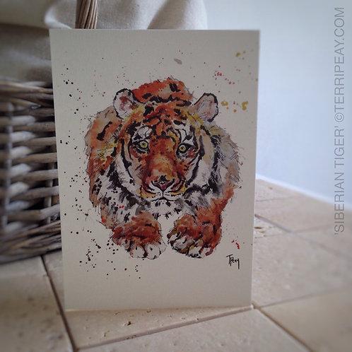 'Siberian Tiger' Card