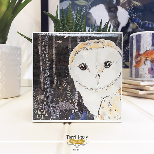 'Twilight Barn Owl' Coaster