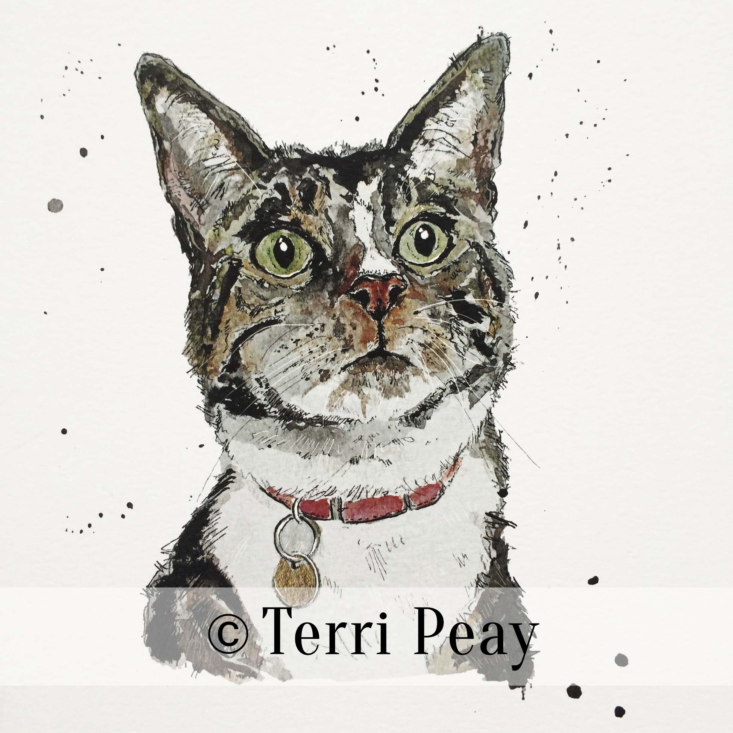 'Ronnie' By Terri Peay