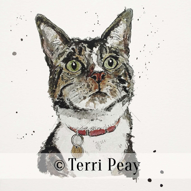 'Ronnie' By Terri Peay