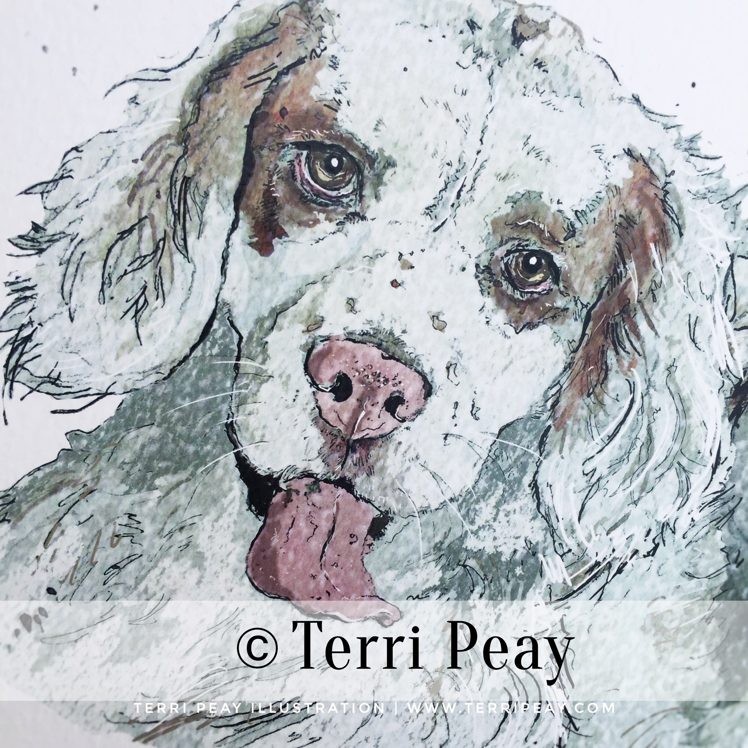 'Poppy' By Terri Peay