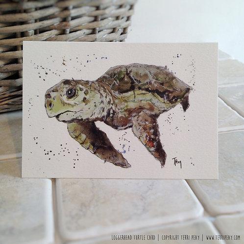 'Loggerhead Turtle' Card