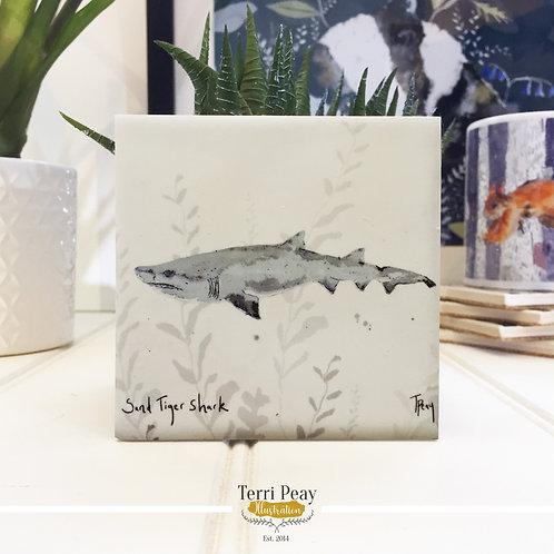 'Sand Tiger Shark' Coaster