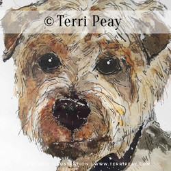 'Alfie-Moon'By Terri Peay