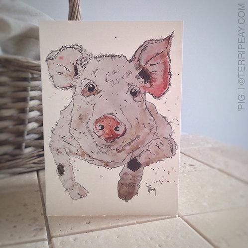 'Pig' Card
