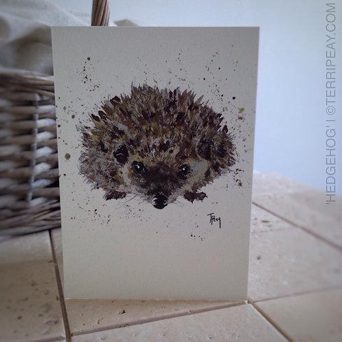 'Hedgehog' Card