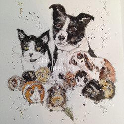 'A Family of Pets' By Terri Peay
