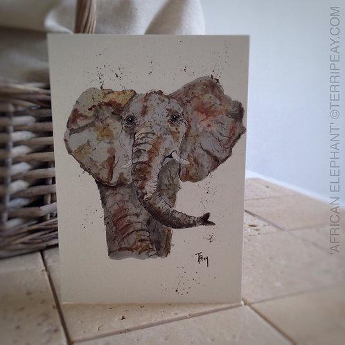 'African Elephant' Card