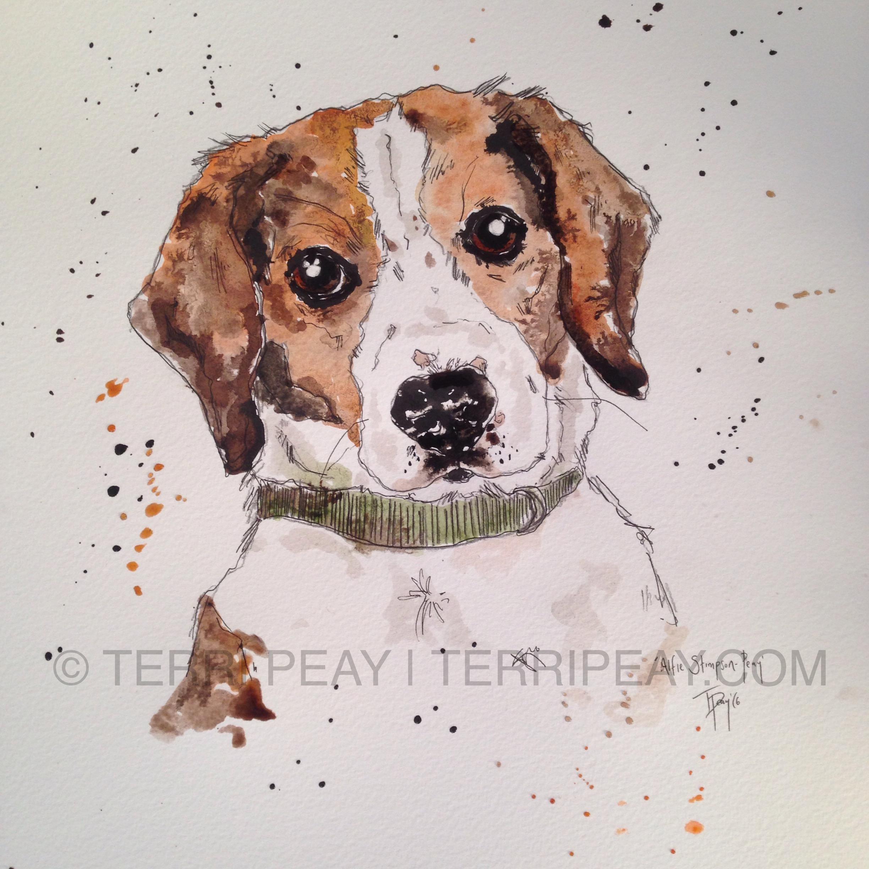 'Alfie' Beagle By Terri Peay