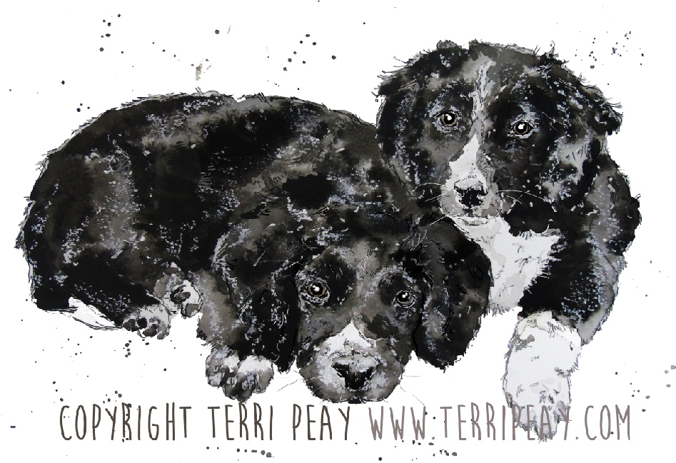 'Puppies' by Terri Peay