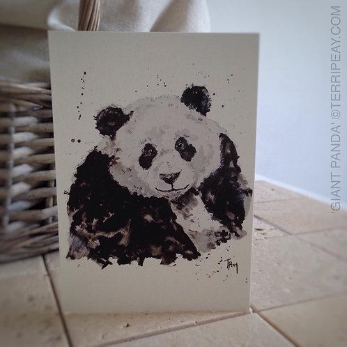 'Giant Panda' Card
