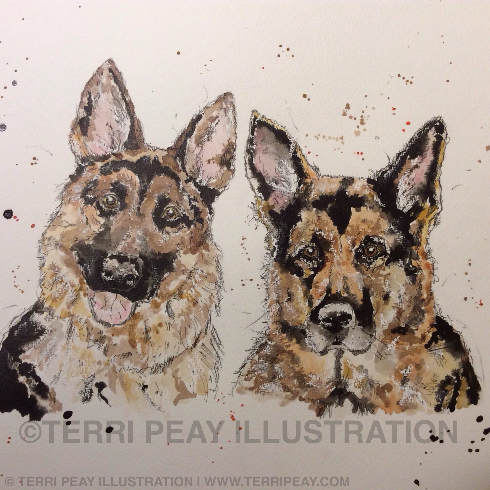 'German Shepherds' by Terri Peay