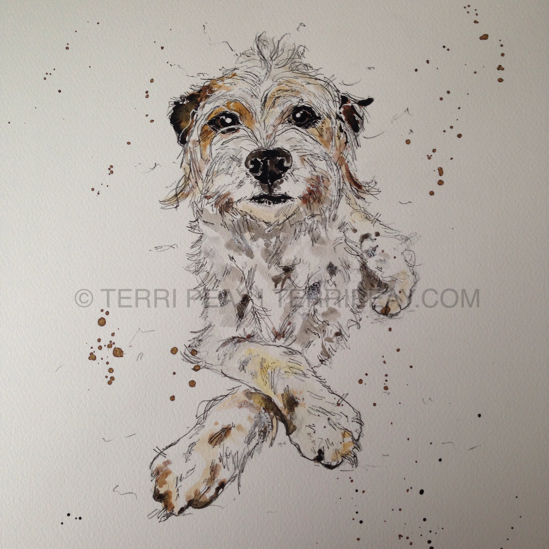 'Dexter' By Terri Peay