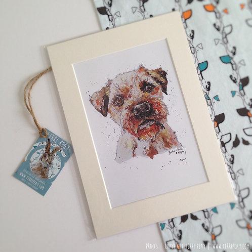 'Border Terrier' Print