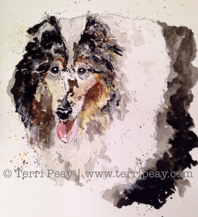 'Rough Collie' by Terri Peay
