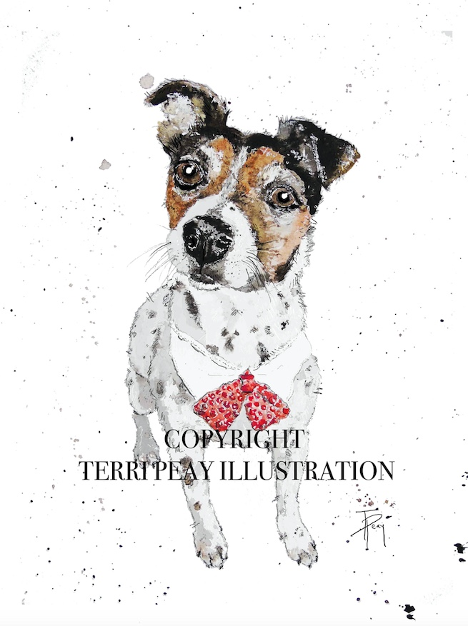 'Paddy' Jack Russell By Terri Peay