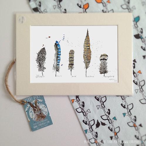 'Wild Bird Feathers' Print