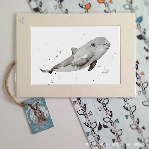 'Harbour Porpoise' Print