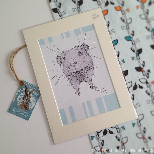 'Poppy Guinea-Pig' Print