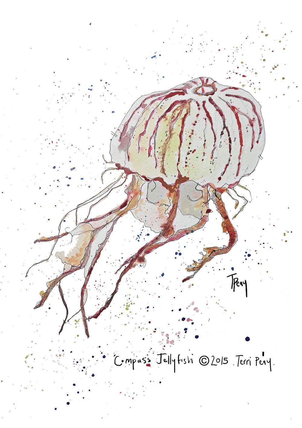 A4 Jellyfish.jpg