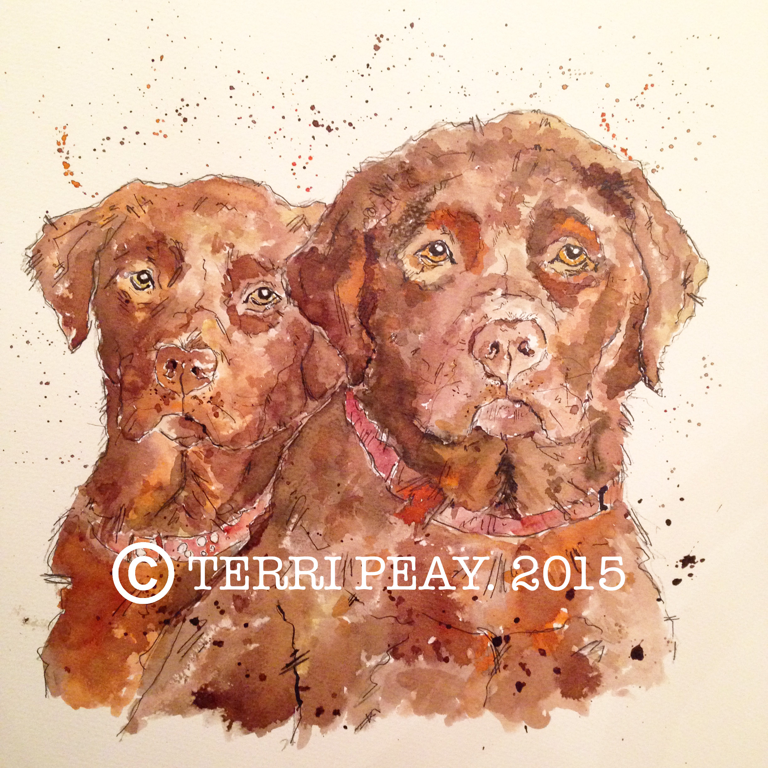'Two Labradors' By Terri Peay