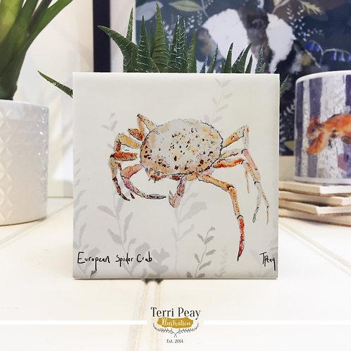 'Spider Crab' Coaster