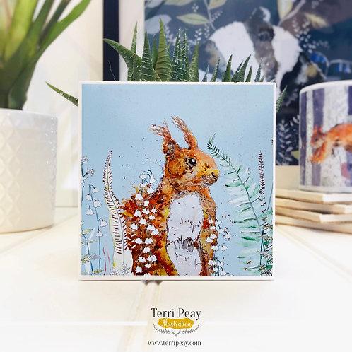 'Woodland Squirrel' Coaster